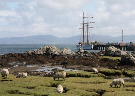Whiskyreis Schotland: Mull & Skye